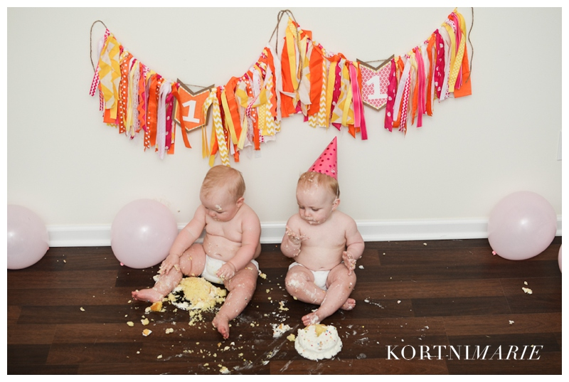 Twin First Birthday